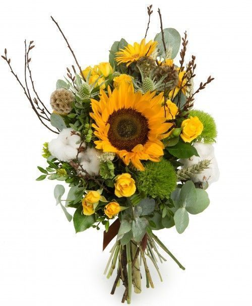 Бесплатная доставка цветов в иваново необычные живые цветы фото