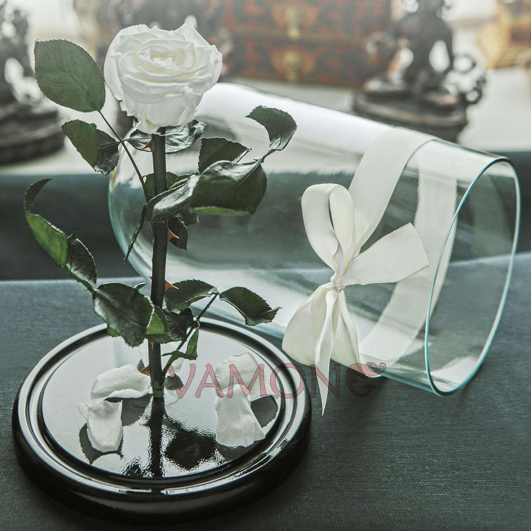 Роза в колбе белого цвета<br>