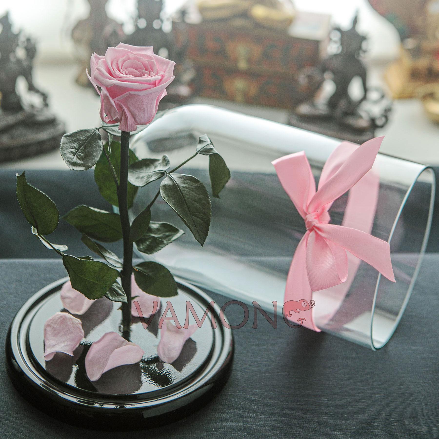 Роза в колбе розового цвета<br>