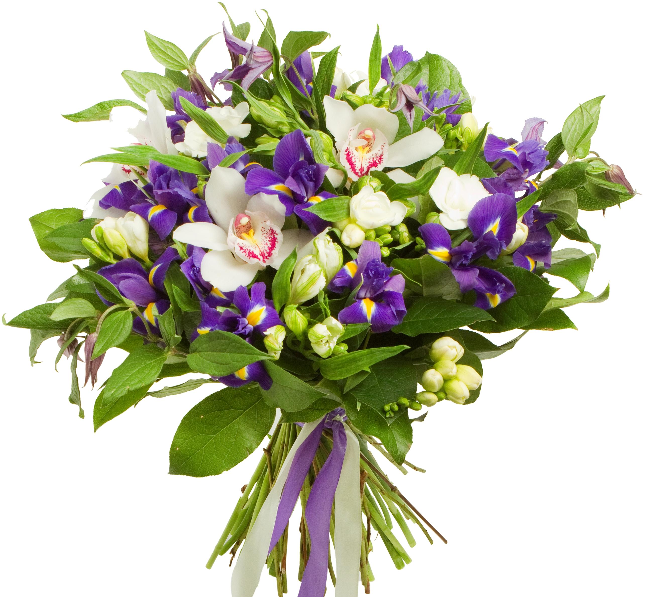 Авторский букет цветов Морской бриз<br>Ингредиенты: Альстромерия 5 шт, Ирис 13 шт, Клематис 3 шт, Салал 1 шт, Фрезия 7 шт, Цимбидиум 3 шт;