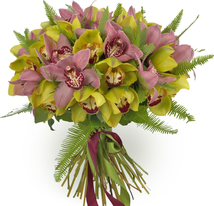 Цветов, букет орхидей цены минск