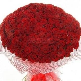 Букет из 201 розы (50см)<br>Ростовка: 50, 60, 70, 80; Состав букета: Розовая роза, Оранжевая роза, Белая роза, Желтая роза, Красная роза, Малиновая роза, Коралловая роза, Кремовая роза;
