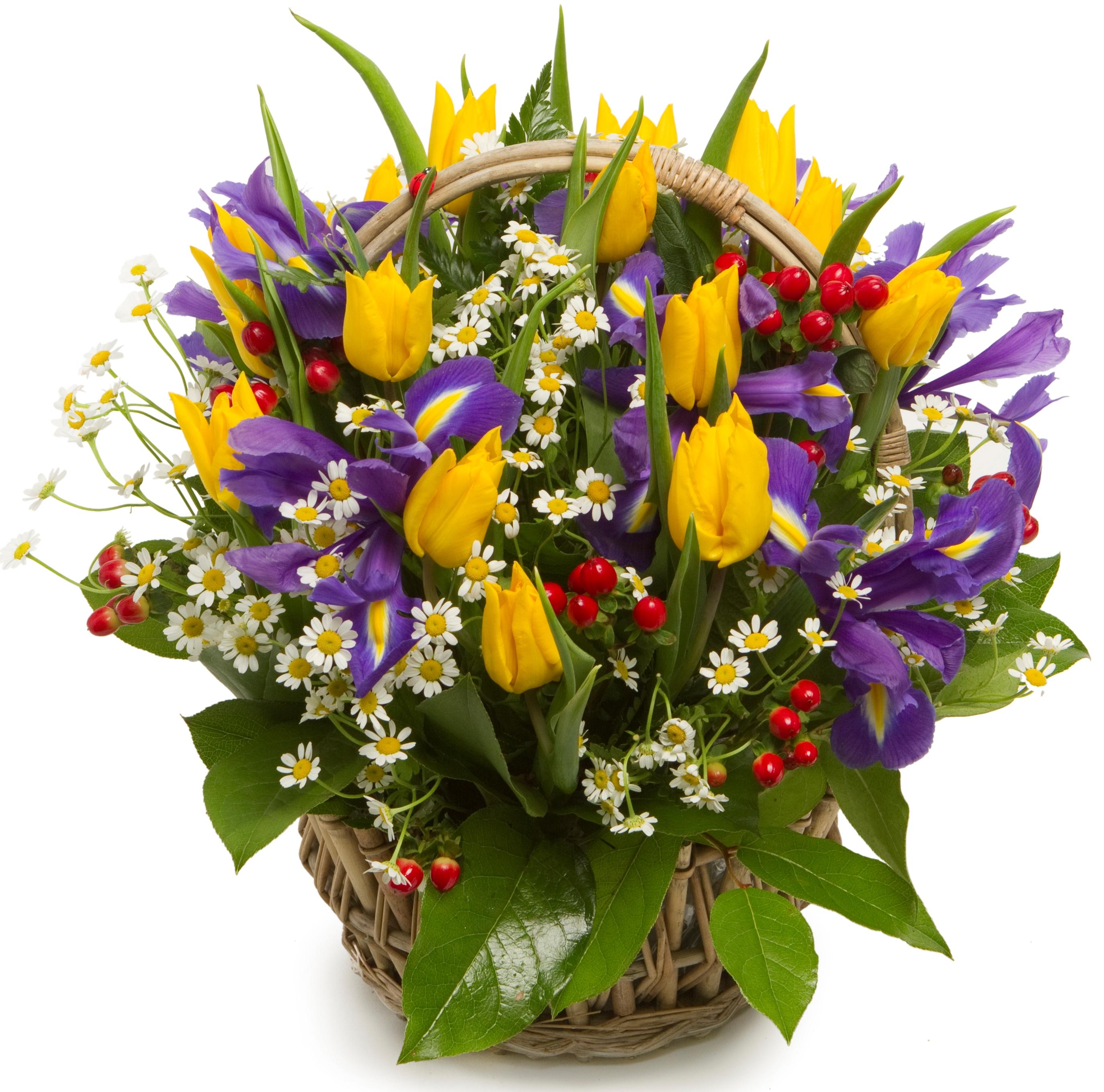 Открытка букет цветов мужчине, напишите поздравления