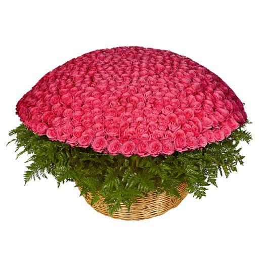 Корзина из 501 розы<br>Ингредиенты: Роза (60 см) 501 шт, Папоротник 3 шт, Оазис 8 шт, Корзина 1 шт;