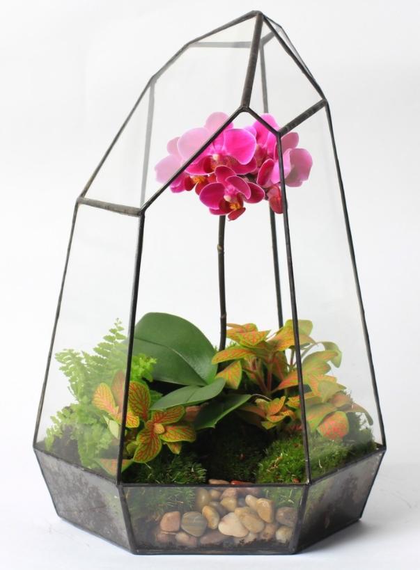 Орхидея 30 см<br>