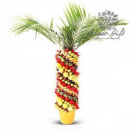 Фруктовая пальма<br>
